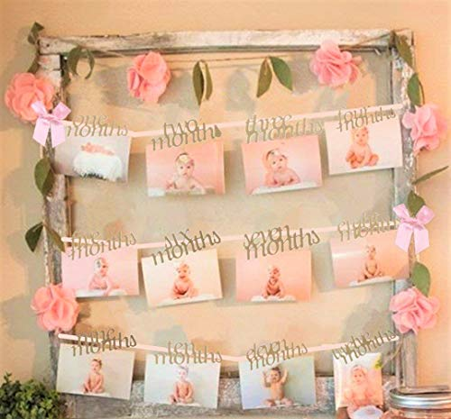 JeVenis Baby Shower Baby Girl Pink 1-12 Months Photo Rope Banner 1st Birthday Party Supply -