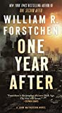 img - for One Year After: A John Matherson Novel book / textbook / text book