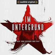 Im Untergrund (Original Podcast) Radio/TV von Patrizia Schlosser Gesprochen von: Patrizia Schlosser