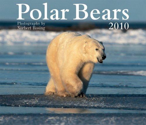 Polar Bears 2010 (Bears Calendar 2010)