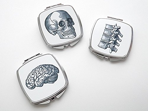 Anatomy Compact Mirror set of three pocket purse accessories brain skull vertebrae (Three Guys Halloween Ideas)
