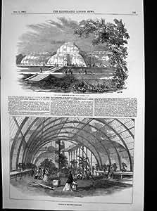 Gran Casa de palmeras Roayal Jardines de Kew de interior exterior de 1848