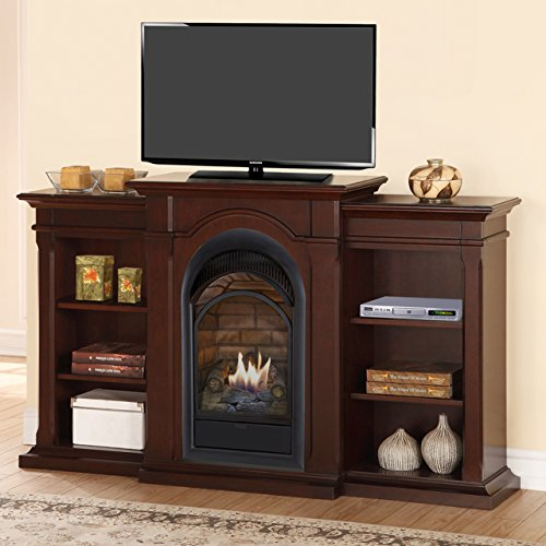 Direct Vent Wood Fireplace (Duluth Forge Dual Fuel Vent Free Fireplace With Bookshelves - 15,000 BTU, T-Stat, Chocolate)