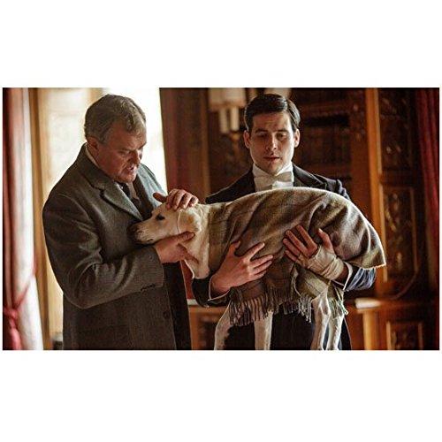 Downton Abbey Rob James-Collier as Thomas Barrow Holding Wrapped Dog 8 x 10 Inch Photo