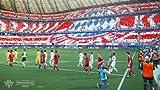 World Soccer Winning Eleven 2014(Japan Imported)