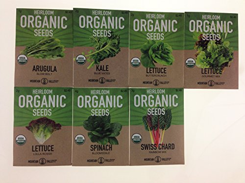 Organic, Heirloom, Non-GMO, Garden Seeds – 7 Varieties of Vegetable Leafy Power Greens – Arugula, Kale, Lolla Rossa Lettuce, Buttercrunch Lettuce, Gourmet Mix Lettuce, Spinach, Swiss Chard by Mountain Valley Seed Company