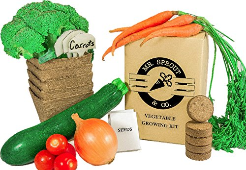 Mr. Sprout & Co Organic Vegetable Garden Kit - Vegetable Garden Seed Starter Kit for Kids, Adults Or Gift Idea- Includes Seeds for Cherry Tomatoes, Broccoli, Onions, Carrots, -