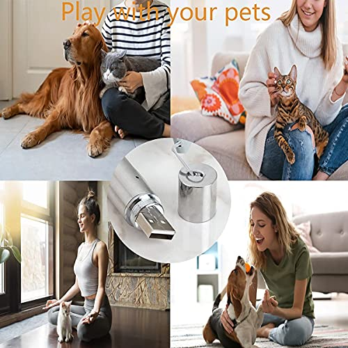 Cats Dogs Interactive Toys,Red LED Projection Cats Toys,Indoor Pets Exercise Training Playing Entertain Tools for Puppy,USB Rechargeable 5 Modes
