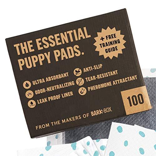 BarkBox Odorless Puppy Pads;