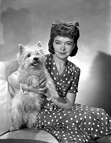 Lillian Gish on a Polka Dotted Dress sitting with a Dog Photo Print (24 x 30)
