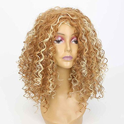 AISI HAIR Kinky Curly Synthetic Wigs for Black Women Blonde Mixed Brown Afro Curly Heat Resistant Wig -