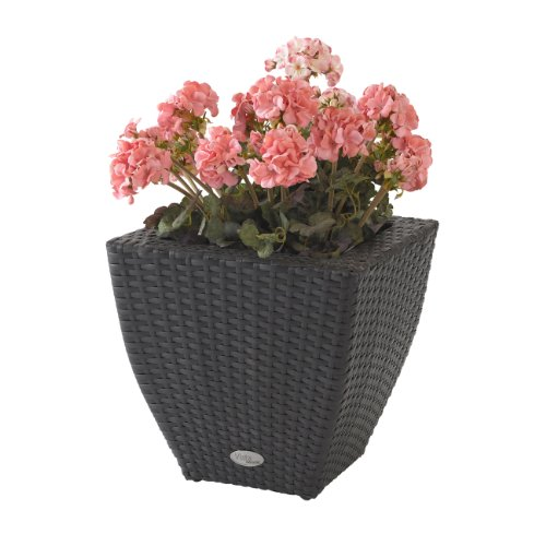 DMC Products 78380 14-Inch Vista Curved Square Resin Wicker Planter from DMC Products
