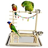Parrot Stand Playground Climb the ladder Bird Playland Corlorful Toy Perch (No.1)