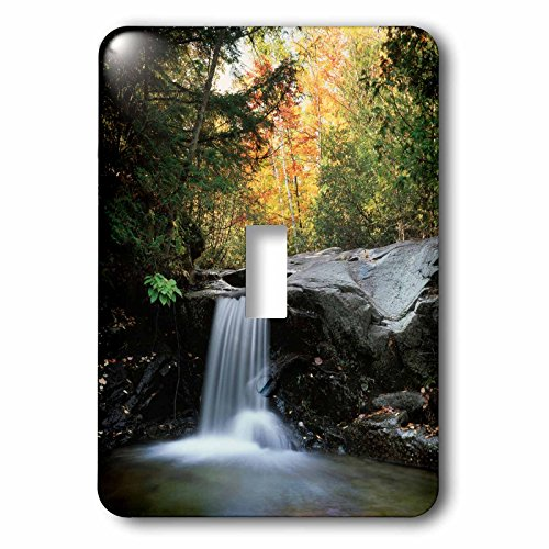 3dRose LSP_231205_1 USA, New Hampshire, White Mountains, Autumn Colors and Waterfall Toggle Switch by 3dRose