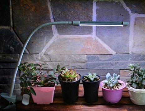 Tellw led plant luce piena spettro crescita lampada fiore orchidea