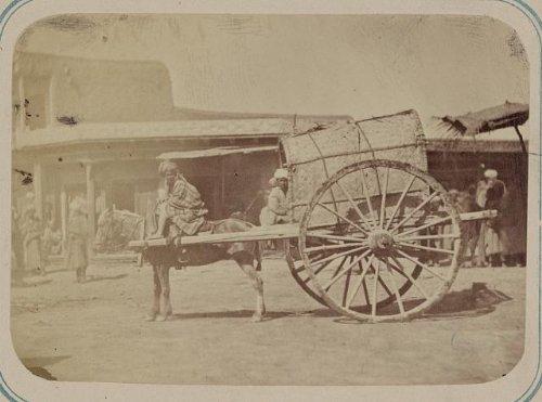 Photo: Uzbekistan, horse-drawn Kokand cart, wagon, c1865 . Size: 8x10 (approximately)