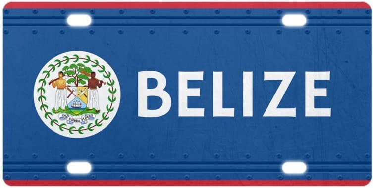 PAGAIXI Tin Signs Plaques Poster Room Metal Sign 6x12 Wall Decor Gresham License Plate Cover Belize License Plate Coverative Car License Plate Auto Tag