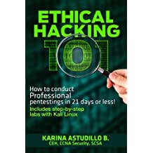 Ethical Hacking 101: How to conduct professional pentestings in 21 days or less! (How to hack) (Volume 1)