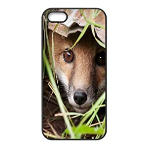 DIY Phone Case for Iphone 5,5S, Sly Fox Cover Case - HL-699369