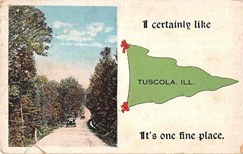 Tuscola Illinois Scenic View Pennant Flag Vintage Postcard JC932298