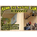 Birdhouse Spy Cam BCAMHEW Hawk-Eye Wireless Spy Camera (Set of 1)