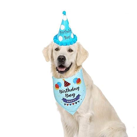 DELIFUR Bandana de cumpleaños para Perro con Sombrero de ...