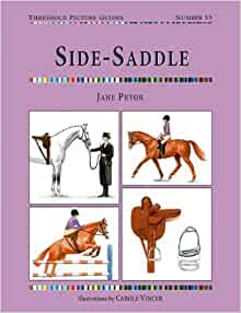 Side Saddle by Jane Pryor 9781905693030 (Paperback, 2007)