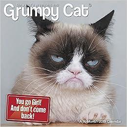 grumpy cat mini wall calendar 2019
