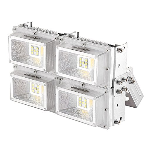 LUMINTURS(TM) 200W Hyper Power LED Chip Floodlight Wall Wash