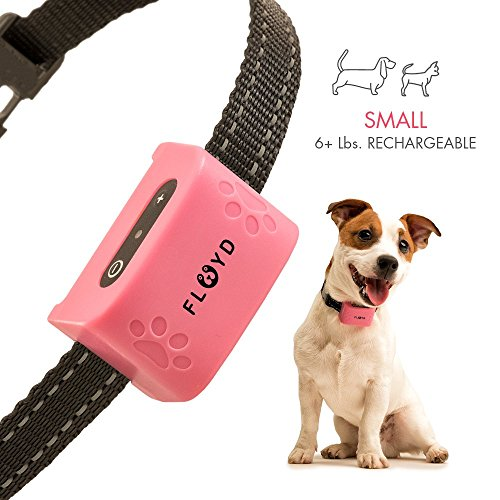 Floyd Small Dog Bark Collar For Tiny To Medium Dogs (6+ lbs). Rechargeable And Waterproof Anti Bark Training Device. Humane Way to Stop Barking - No Shock No Spiky Prongs! by Floyd
