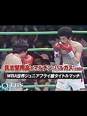 具志堅用高×マルチン・バルガス WBA世界ジュニアフライ級タイトルマッチ