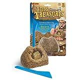 I Dig Treasures-Gold Rush Mini Dig