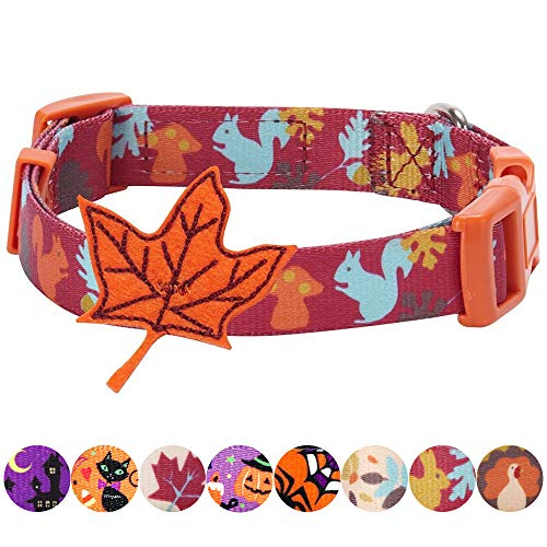 Blueberry Pet 8 Patterns Thanksgiving Fall Fun Enchanting Squirrel Designer Adjustable Dog Collar with Maple, Small, Neck 12