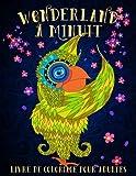 Wonderland à Minuit: Livre De Coloriage Pour Adultes: Un livre de coloriage fantaisiste avec un papier à fond noir unique : Un cadeau antistress ... et relâcher le stress) (French Edition) Livre Pdf/ePub eBook