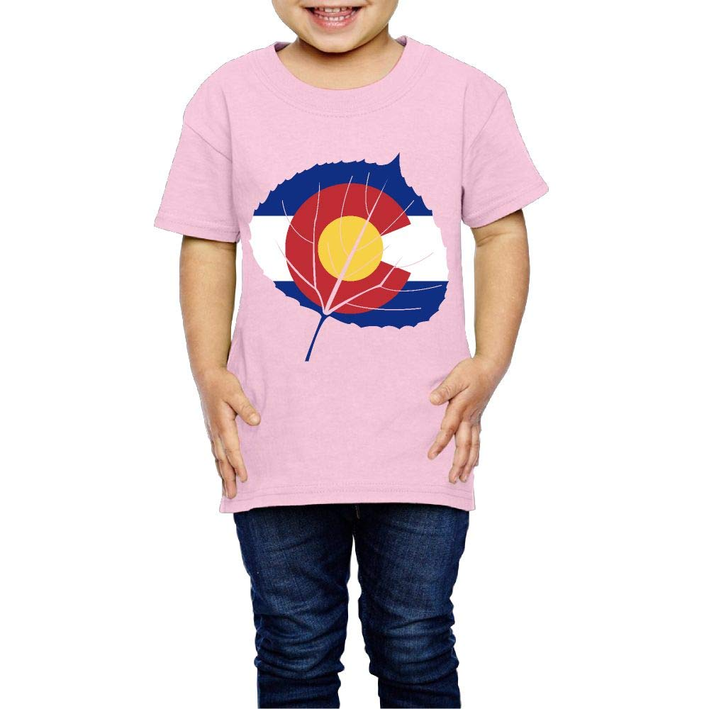 Aspen Leaf Colorado Flag 2-6 Years Old Child Short-Sleeved Tshirt