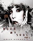 Burn My Soul: Part I (The Soul Series Book 1)