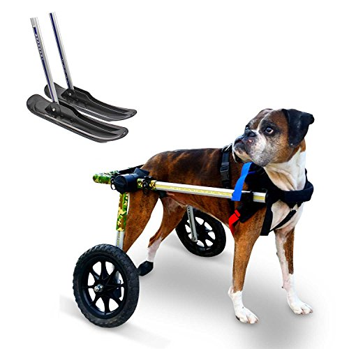 Dog Wheelchair & Ski Attachment for Med/Lg Dogs 51-69lbs - Veterinarian Approved - Wheelchair for Back Legs - By Walkin' Wheels