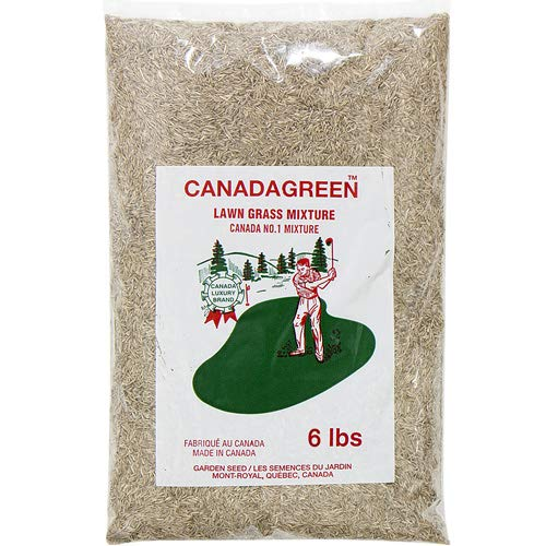 Canada Green Grass Lawn Seed - 12 Pounds by Canada Green