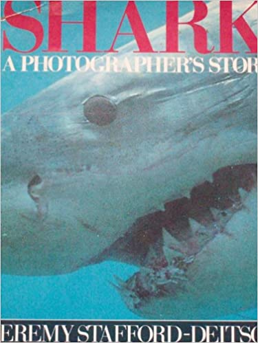 shark a photographers story