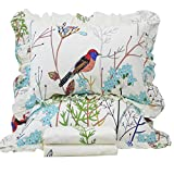 queen quilt birds - Queen's House Beautiful Bird Print Duvet Quilt Cover Bedding Set-Queen,C