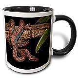 Best 3dRose Boas - 3dRose 3dRose Rainbow Boa Snake, Amazon rainforest, Ecuador Review