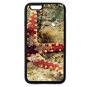 iPhone 6S Plus Case, iPhone 6 Plus Case, Seastar