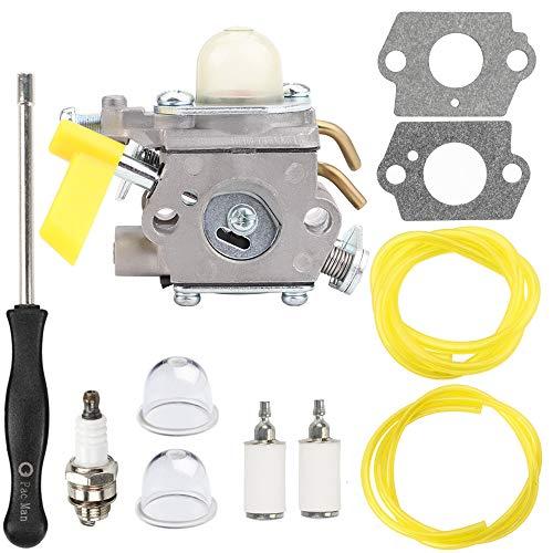 Hipa 308054043 Carburetor Carb