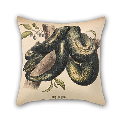 Helena Blush (Bestseason Oil Painting Helena Forde - Diamond Snake, Morelia Spilotes Pillow Covers ,best For Dance Room,girls,home Theater,lover,deck Chair 18 X 18 Inches / 45 By 45 Cm(both Sides))