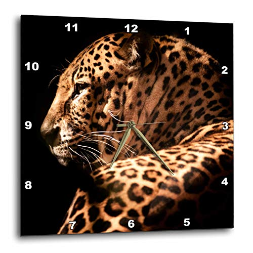 3dRose Sven Herkenrath Animal - Portrait Of An Elegant Leopard Wildlife Photography - 15x15 Wall Clock (dpp_288322_3)