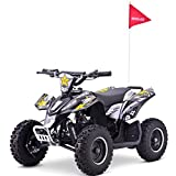 Renegade LT100E Electric Battery 1000w Quad Bike - White