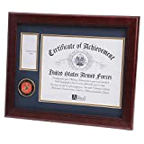 Allied Frame United States Marine Corps Medal and Award Frame