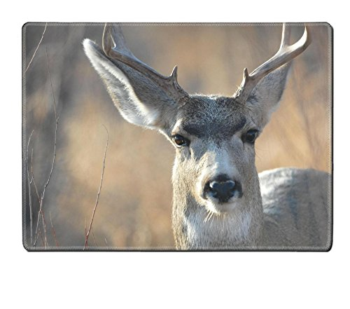 Liili Placemat Natural Rubber Material A mule deer buck making direct eye contact with the camera lens Photo (Orange Contact Lenses)