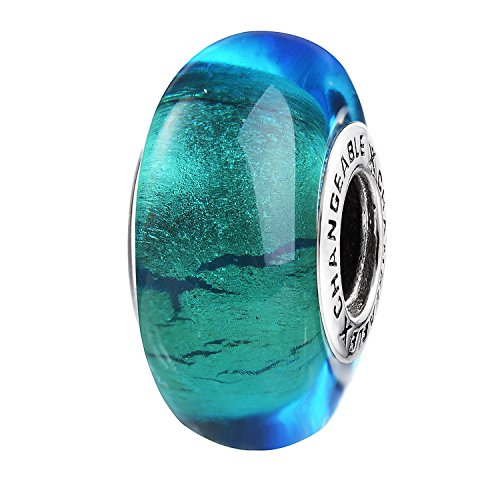 Changeable Murano Glass Charms with 925 Sterling Silver (Looking into Future