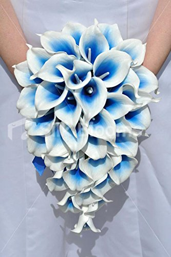 Bouquet Blu Sposa.Amazon Com Electric Blue Vermeer Lily Teardrop Wedding Bridal